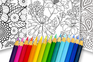 Coloring Secret